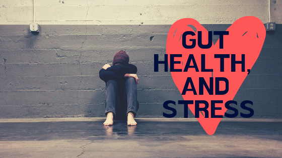 How the gut affects stress